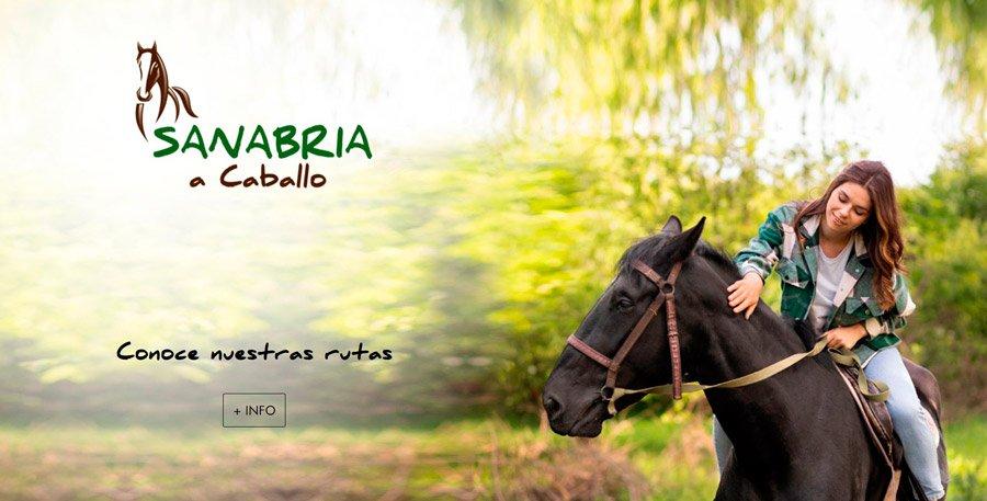 web personalizada caballos